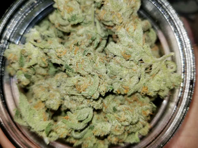 Cannabis in Vermont