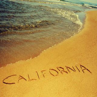 california CUA collective MAUCRSA