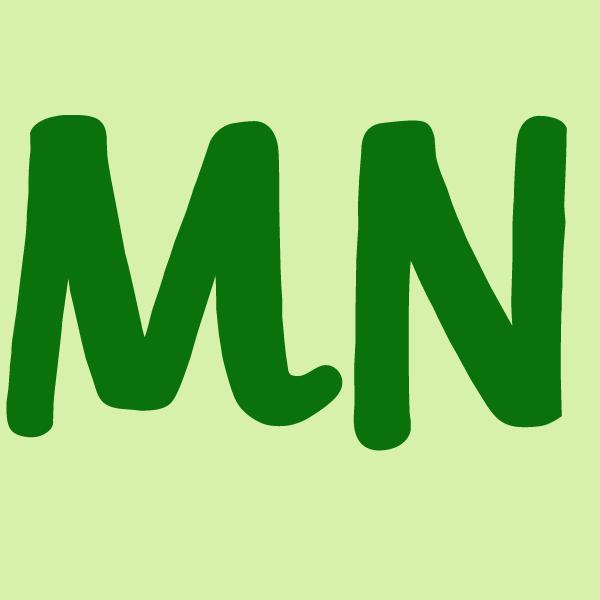 Minnesota icon