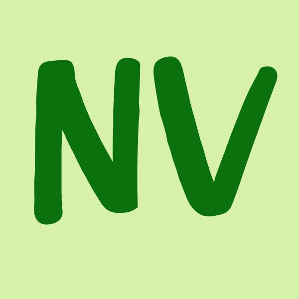 Nevada icon