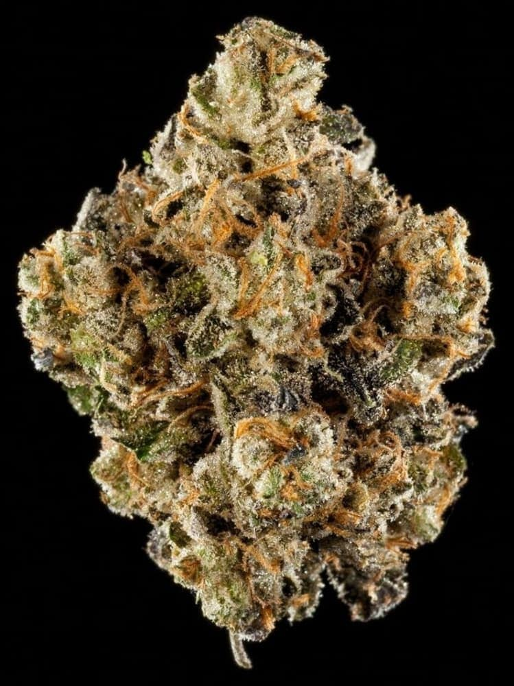 Winners of the 2018 SoCal Cannabis Cup – Cannabistical: of