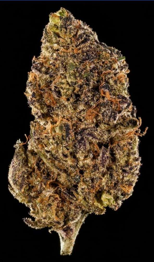 Winners of the 2018 SoCal Cannabis Cup – Cannabistical: of or