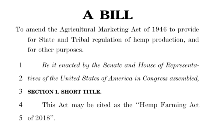 industrial hemp cannabis farm bill