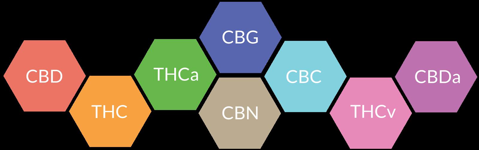 cannabinoid chain