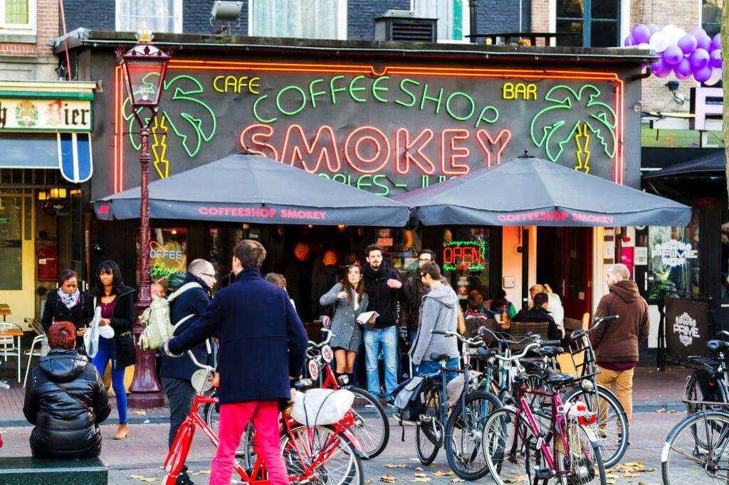 netherlands dutch cannabis